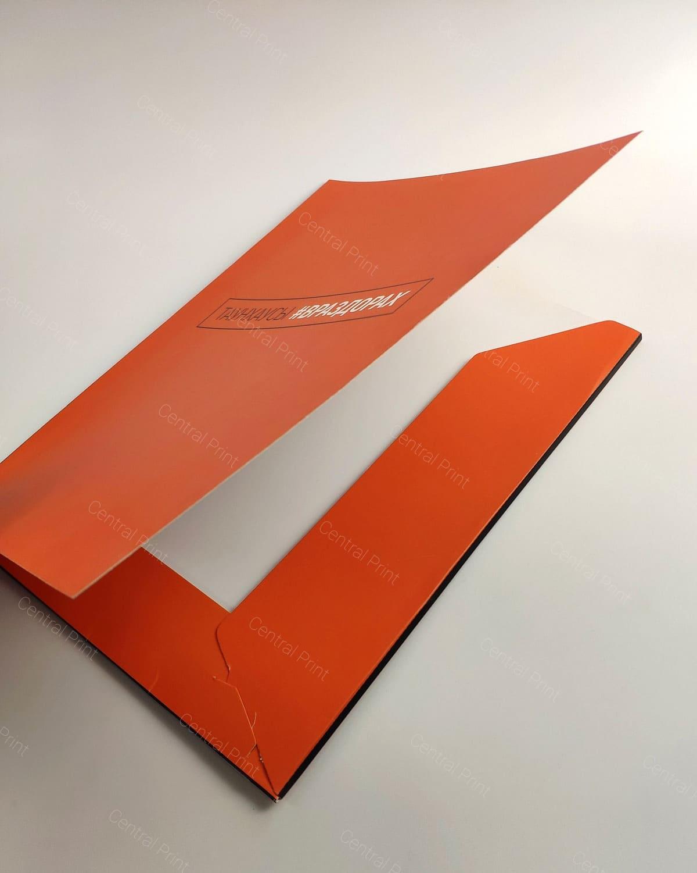 оранжевая папка а4